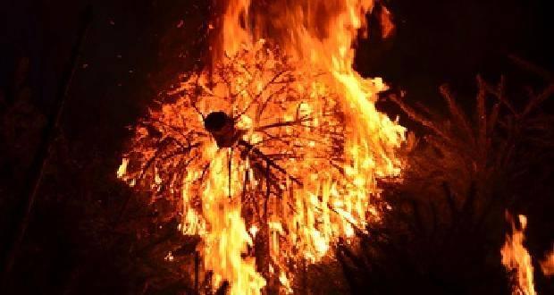Weihnachtsbaum in Flammen