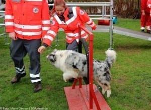 Helden Event Rettungshundestaffel Legoland Deutschland Günzburg