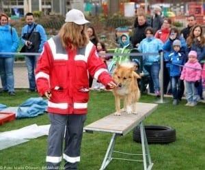 BRK Rettungshundestaffel Helden Event Legoland Deutschland Günzburg