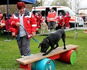 Rettungshunde BRK LEGOLAND
