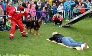 Rettungshundestaffel PersonensucheHelden Event Legoland Deutschland Günzburg