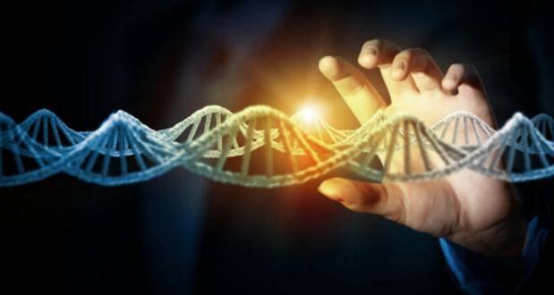 DNA DNS