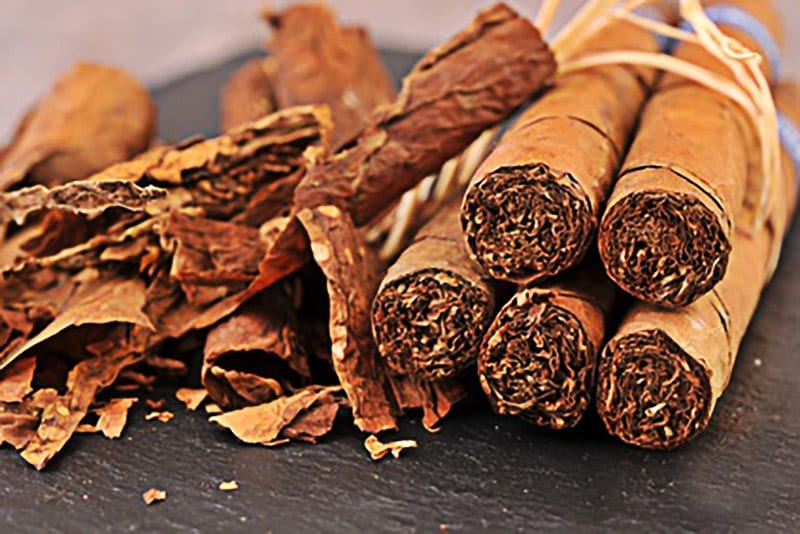 Zigarren im Bündel