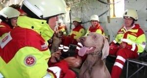 Johanniter Hubschrauber Rettungshunde