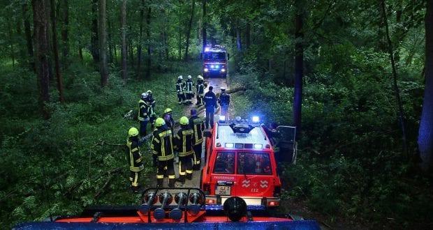 Unglück - Unwetter bei Günzburg Frau von Baum getroffen