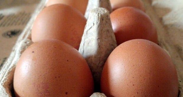Mehrere Eier
