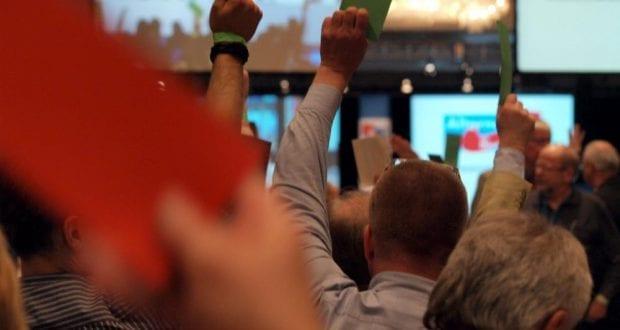 Abstimmung auf einem Parteitag AFD