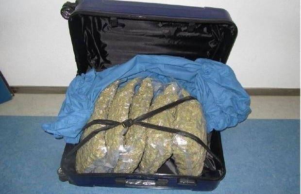 Augsburg Marihuana sichergestelle 1