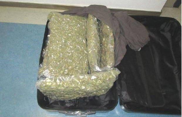Augsburg Marihuana sichergestelle 2