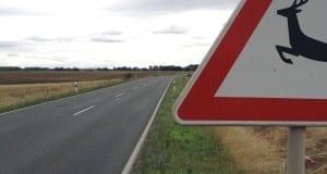 Verkehrszeichen das auf Wildwechsel hinweist.