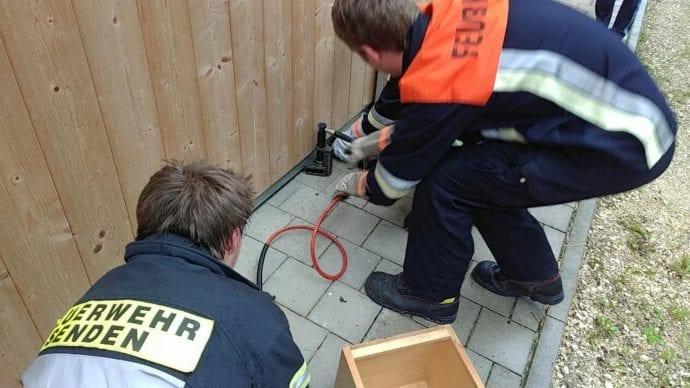 Marder befreit Senden Feuerwehr 1