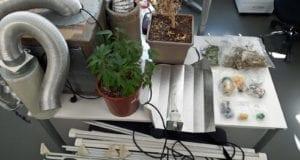 Drogen Mindelheim sichergestellt