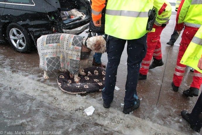 Unfall A8 Günzburg-Burgau Hund entlaufen 03022019 9