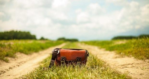 Geldbeutel Tasche Gras