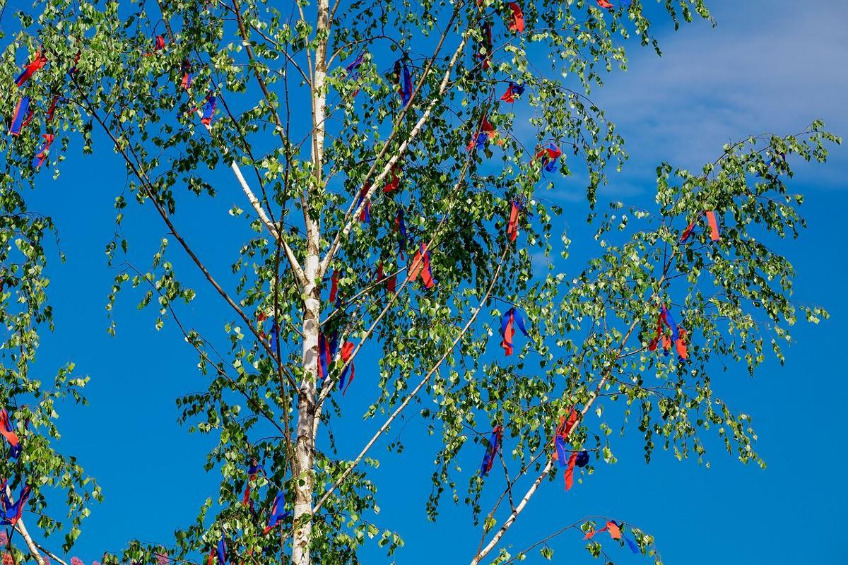 Kleinerer Maibaum
