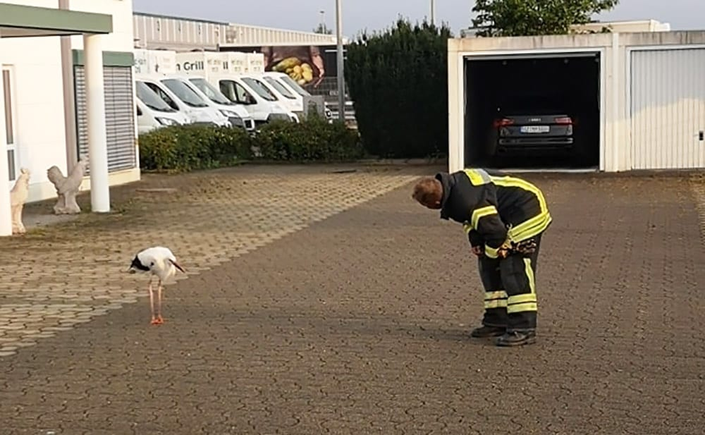 Storch Leipheim Feuerwehr