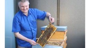 Bienenprojekt Sparkasse AOK Stadt Guenzburg