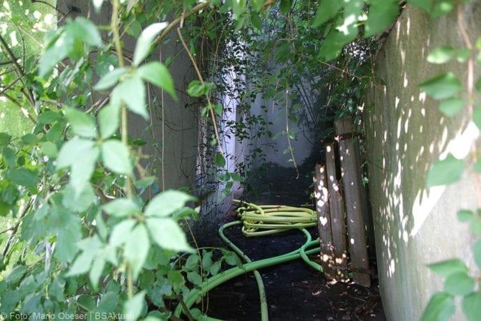 Brand Müll leerstehendes Haus Günzburg 23082019 3