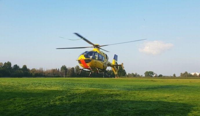 Günzburg Pferd stirbt – Reiterin verletzt 24082019 4