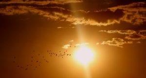 Sonne sonnenschein