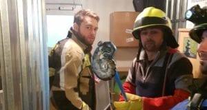 Wuergeschlange im Keller entdeckt