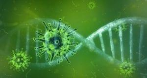 Corona Virus Bild