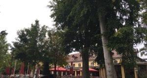Barfüßer Neu-Ulm