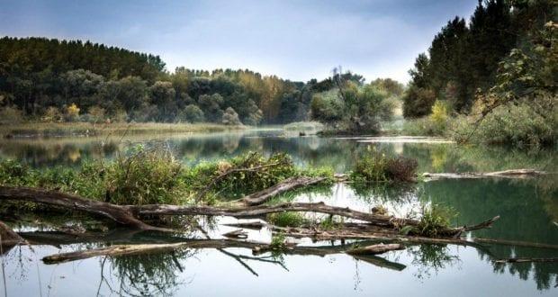 Donau Ufer Wasser