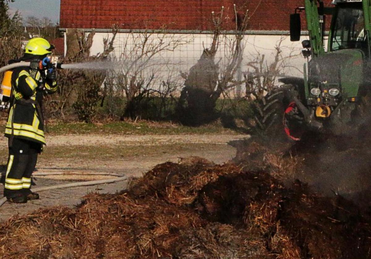 Misthaufen Kompost Brand
