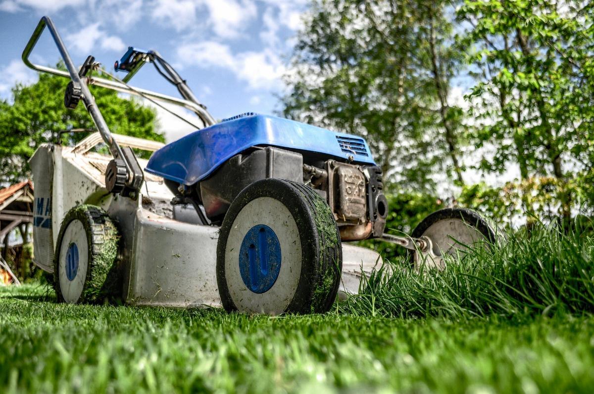 Rasenmaeher Rasen maehen