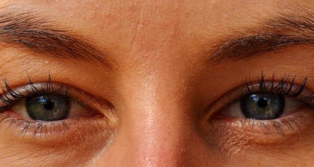 Auge Augen
