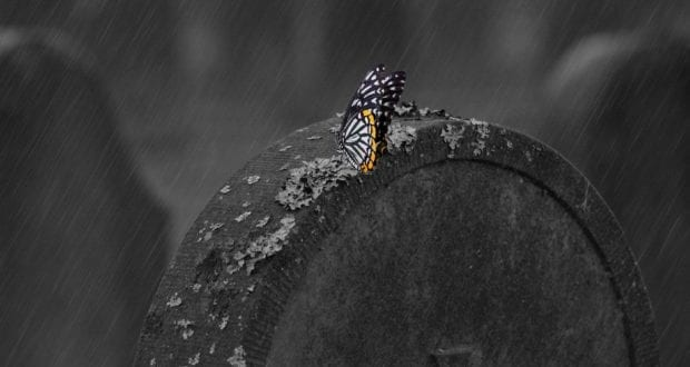 Grabstein Schmetterling
