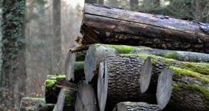 Holz aufgeschichtet Holzstapel