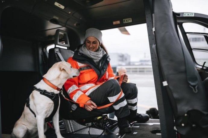 Rettungshund vergiftet BRK Augsburg Maya