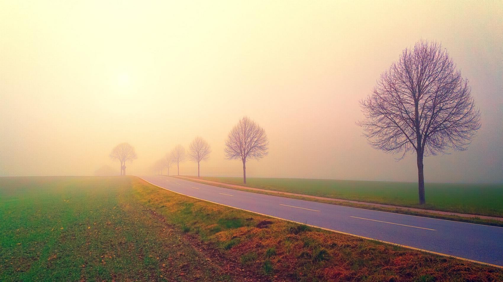 Strasse Nebel