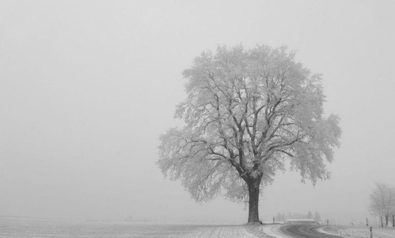 Schnee Strasse Winter