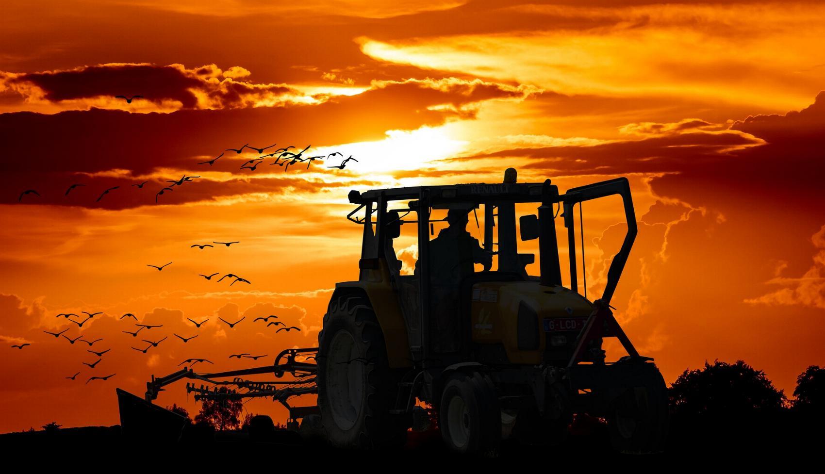 Traktor Acker Feld